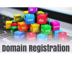 Domain Registration Company