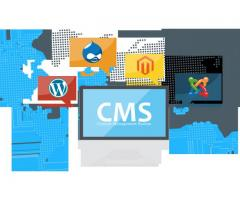 CMS Website Development Company